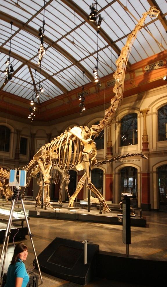scanningbrachiosaurus
