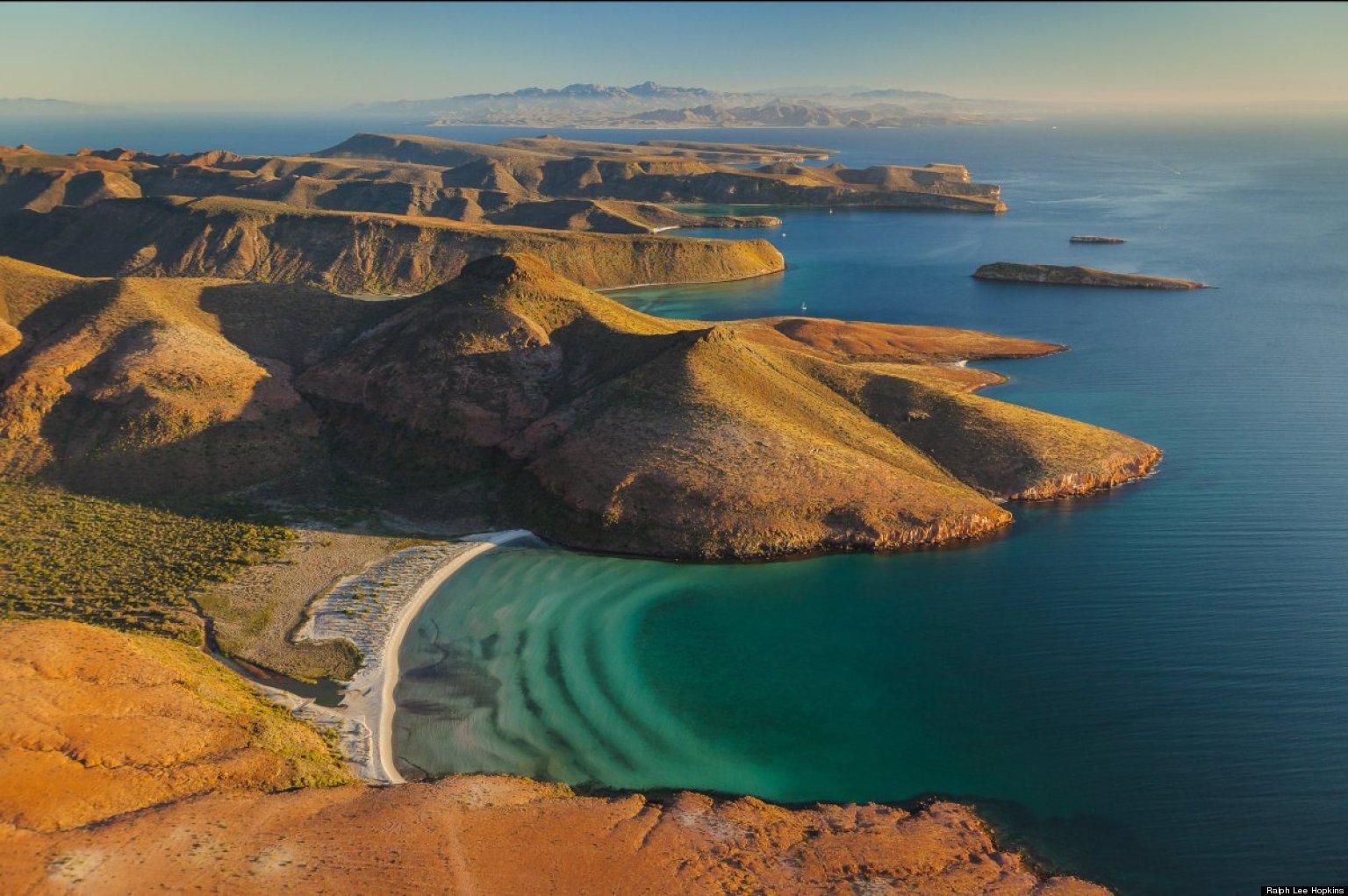 Wild Nature In Baja California And The Sea Of Cortez ...