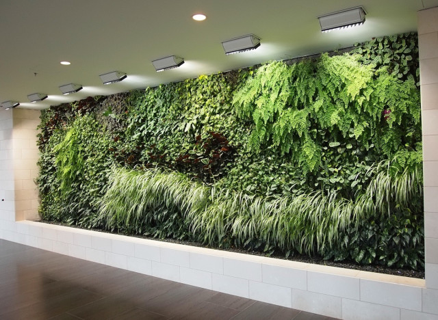 Vertical Indoor Garden Beautiful vertical garden photo inspires us to grow one of our own vertical garden workwithnaturefo