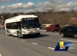 Janai Stafford Bus Rescue: Maryland Woman With No Driver's License Makes Heroic Rescue (VIDEO)