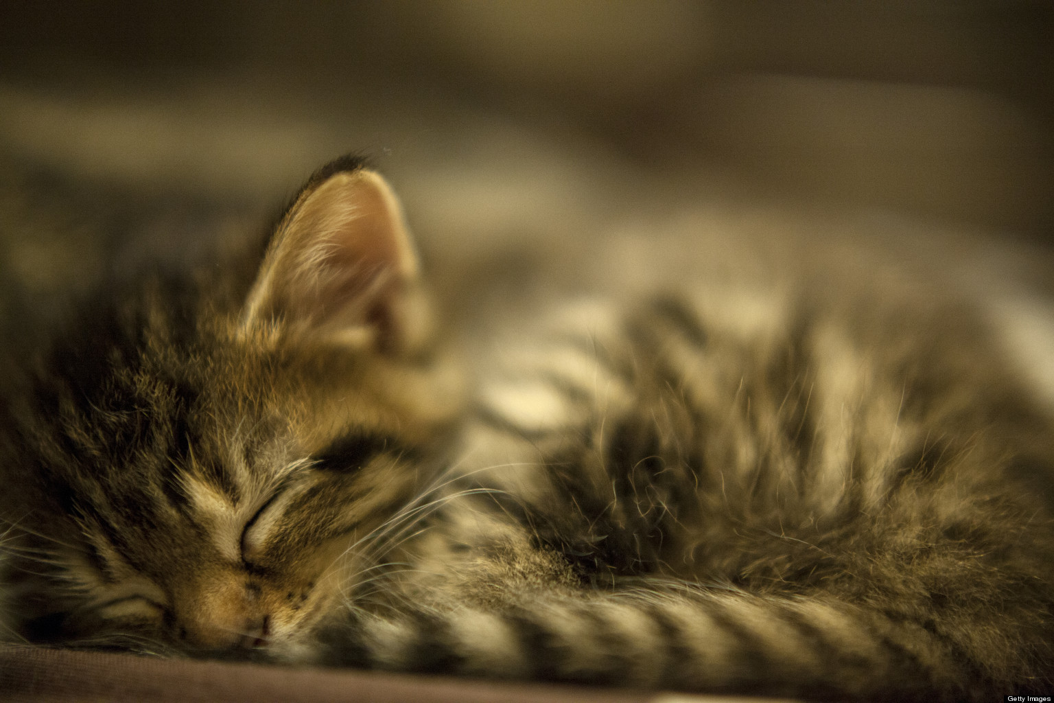 It's National Napping Day! 6 Healthy Reasons To Snooze Today