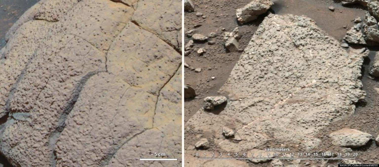 Life On Mars Evidence? NASA's Curiosity Rover Finds ... Evidence Of Life On Mars