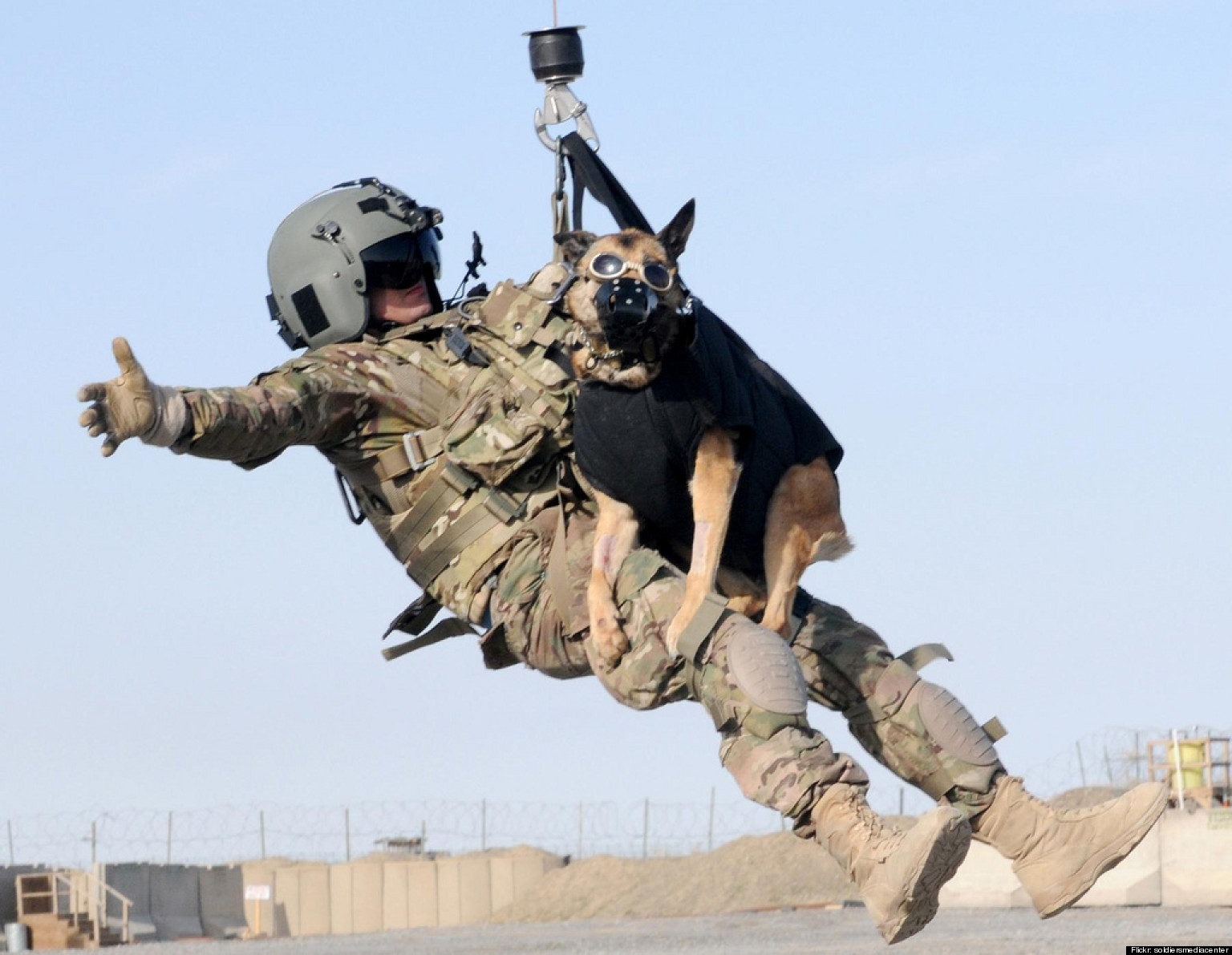 Military Working Dog Goes Airborne During Training Exercise (PHOTO)