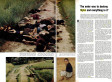 My Lai Massacre Anniversary: 45 Years Later, LIFE Magazine Remembers American Atrocities In Vietnam
