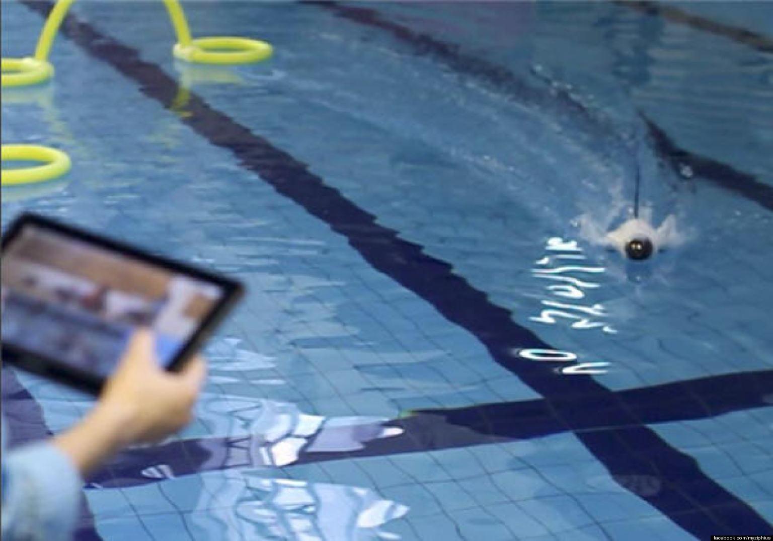 reddit sitio de citas Deportes acuáticos