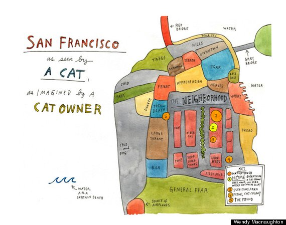 lost cat book san francisco