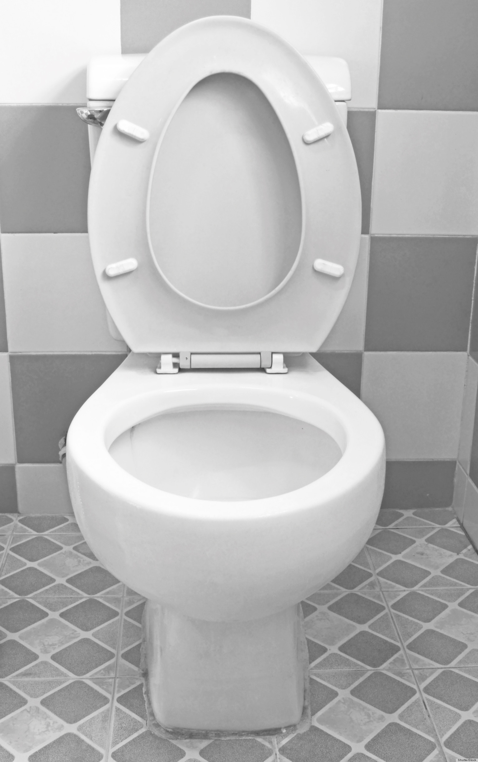 10 Things You Didnt Know About Toilets That Are Totally Fascinating (PHO -> Commode Tv But