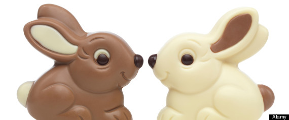 CUTE CHOCOLATE BUNNY