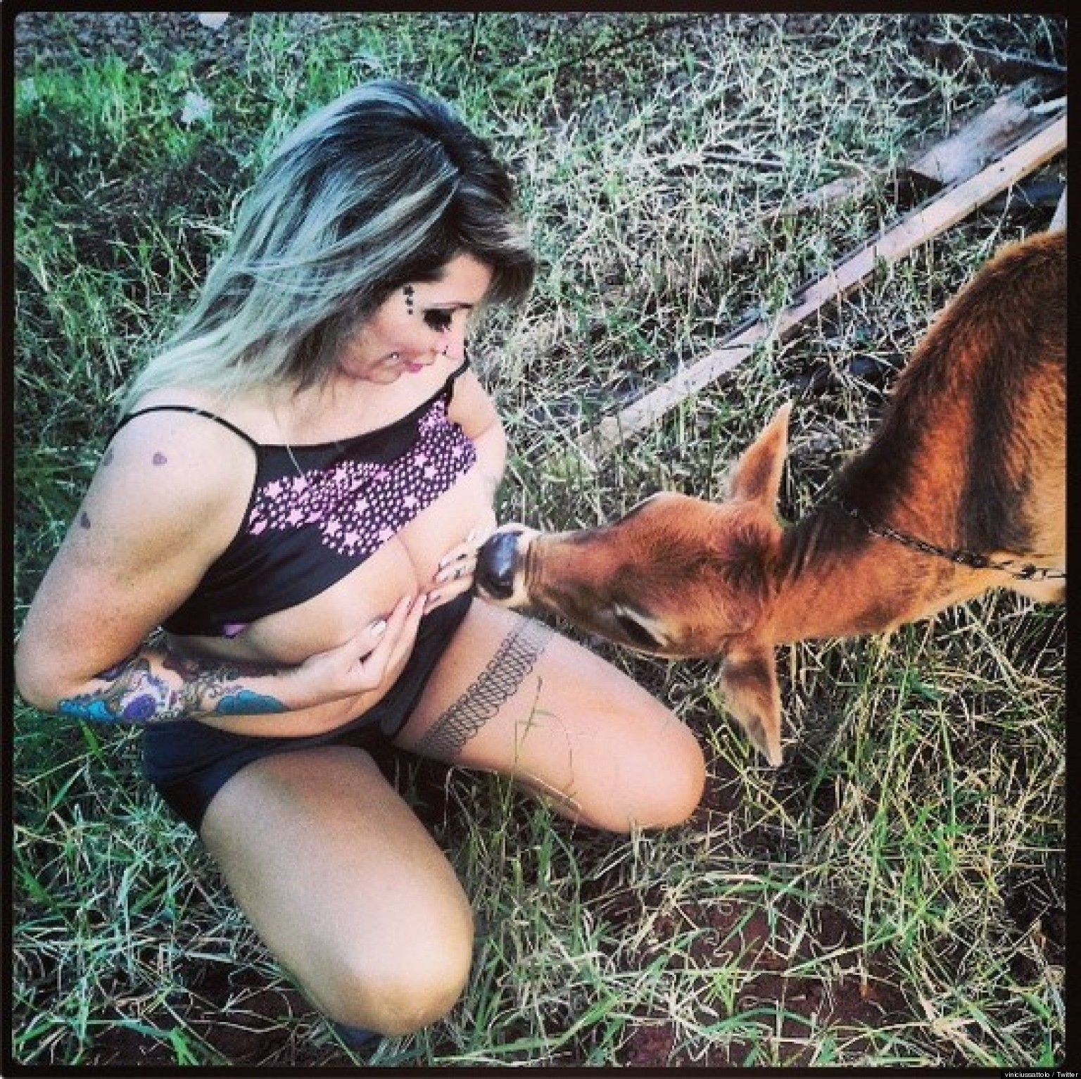 Sabrina Boing Breastfeeds Animals Facebook