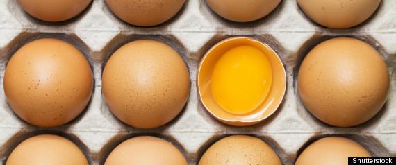Egg Yolk Health