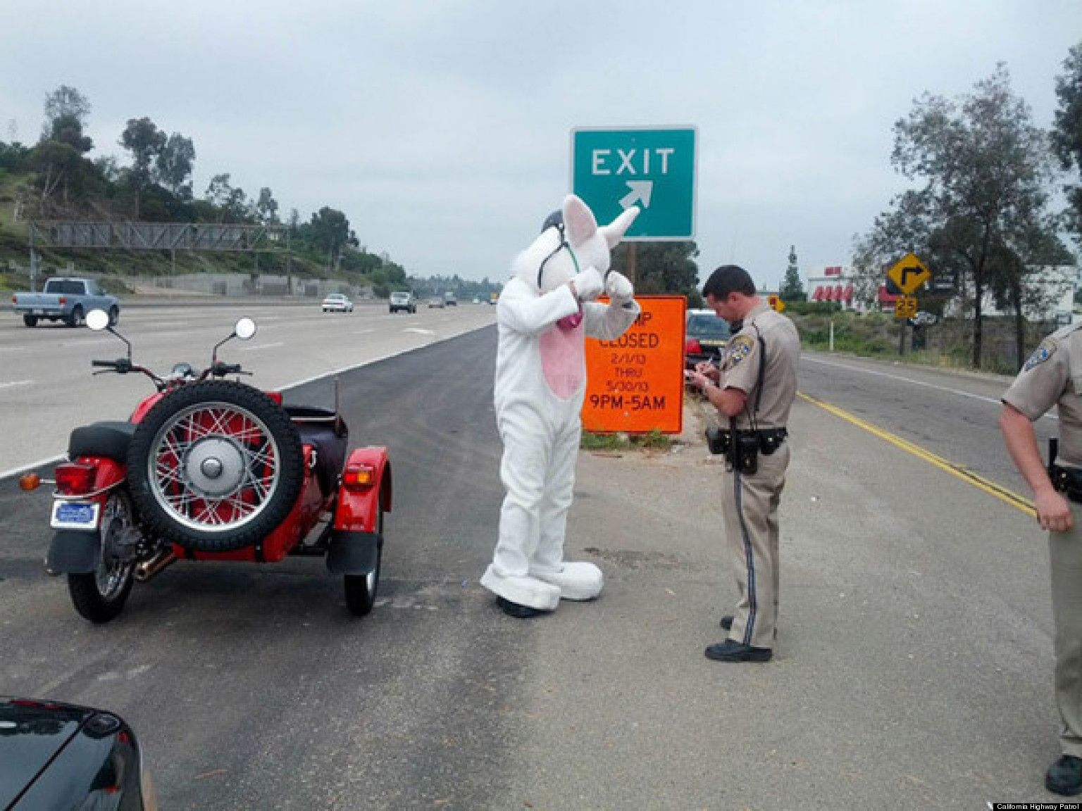 Easter Bunny Pulled Over: San Diego Officer Stops Rabbit On Motorcycle