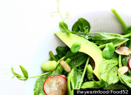 16 Ways With Fava Beans