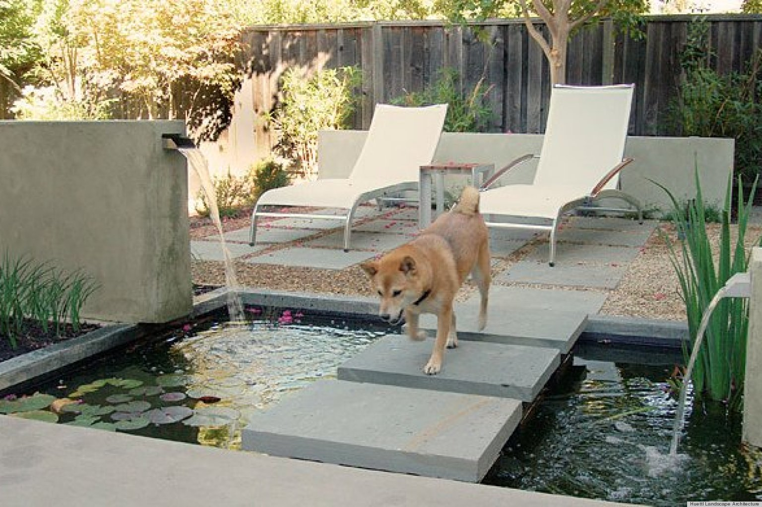 Backyard Ideas For Dogs outstanding minimalist small backyard landscaping outdoor ideas showing green grass with colorful flower and plant design 8 Backyard Ideas To Delight Your Dog Huffpost