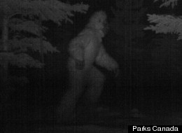 Bigfoot Sasquatch Banff