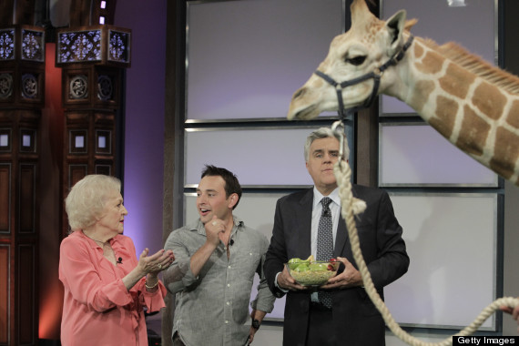 betty white giraffe