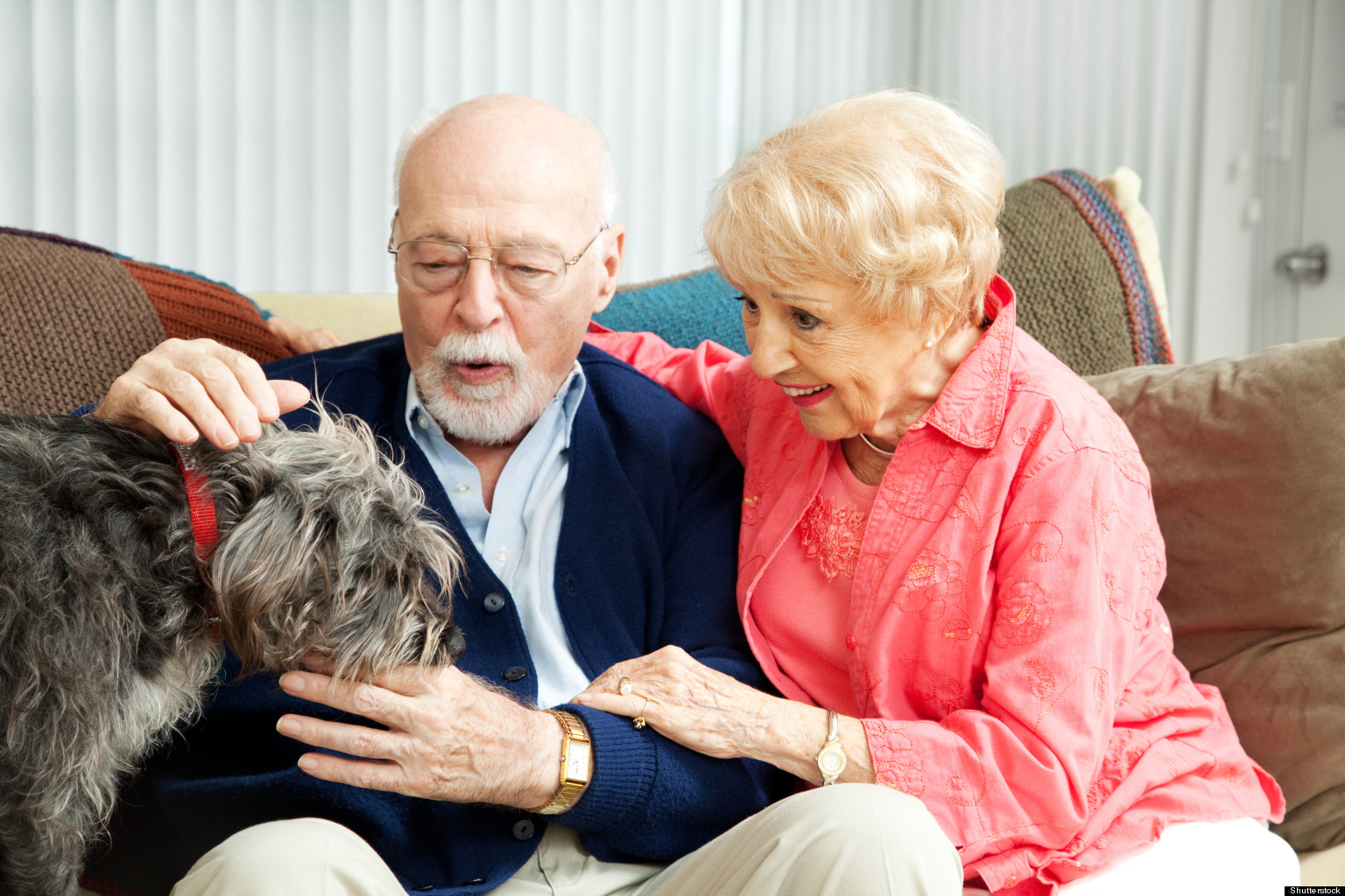 pets for the elderly Memorable pets are comforting, loving and nurturing gifts for alzheimer's patients realistic looking, breed specific, plush stuffed animal cats and dogs.