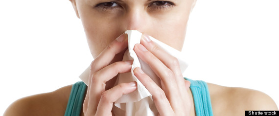 ASTHMA ALLERGIES ADULTS