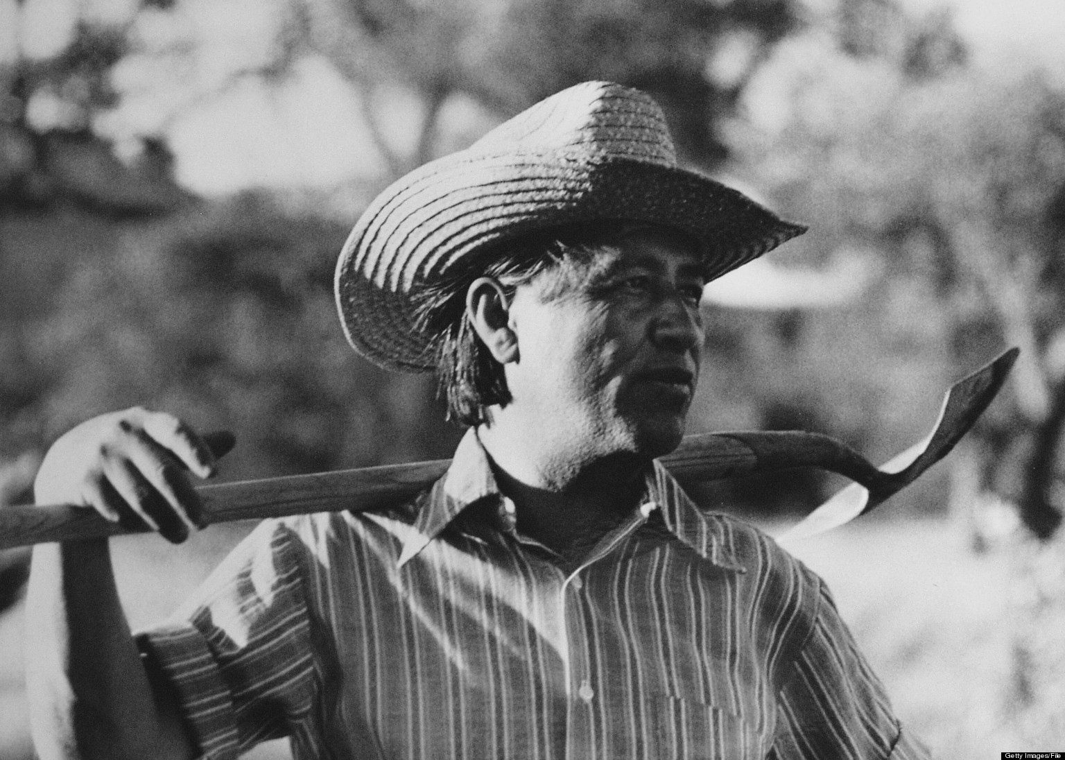 Cesar Chavez: Cesar Chavez Used Terms 'Wetbacks,' 'Illegals' To Describe