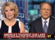 Megyn Kelly Questions Wayne LaPierre Over Limiting Magazine Clips (VIDEO)