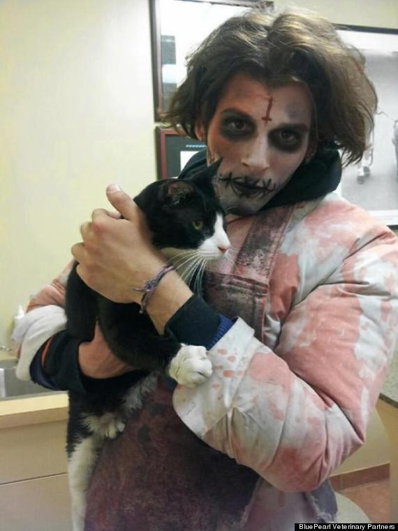 zombie saves cat