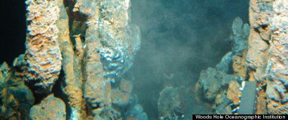 MICROBES ROCKET FUEL