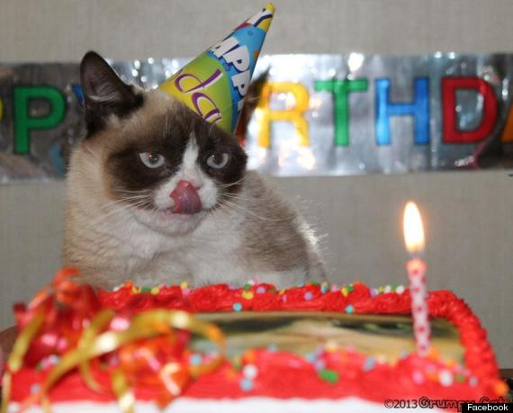 tard grumpy cat birthday