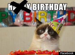 Funny Cat Birthday Meme : Grumpy cat birthday meme funny cats