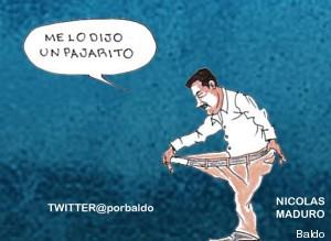 maduro_pajarito