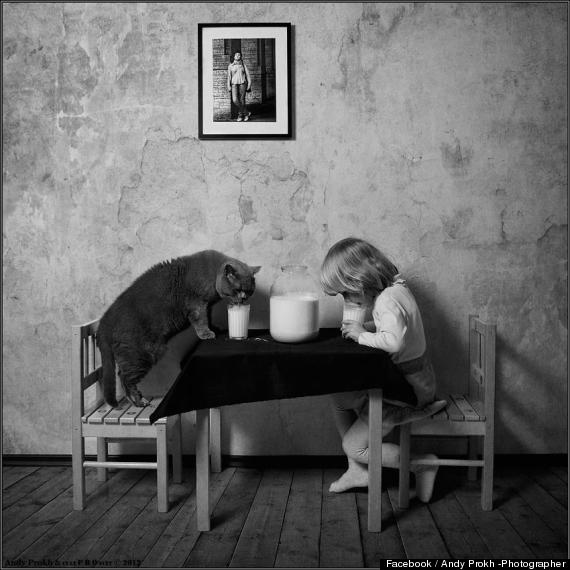 andy prokh a girl and her cat