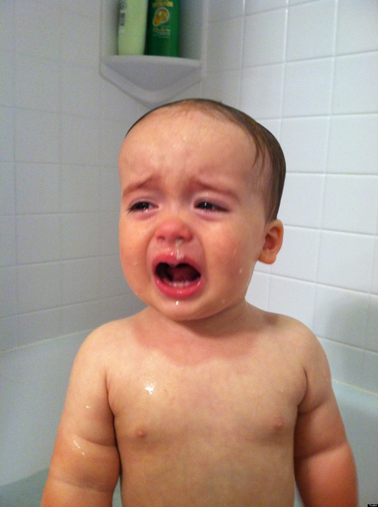 Reasons My Son Is Crying Tumblr Is Hilarious Documentation ...