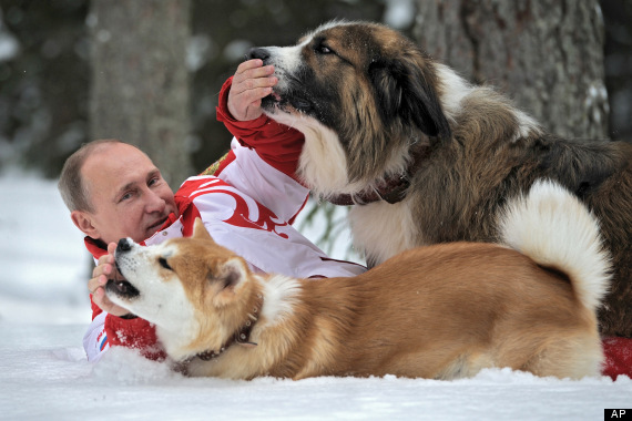 o-VLADIMIR-PUTIN-DOGS-570.jpg?6