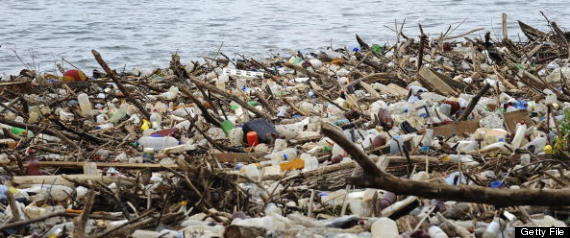 Great Lakes Garbage Patch