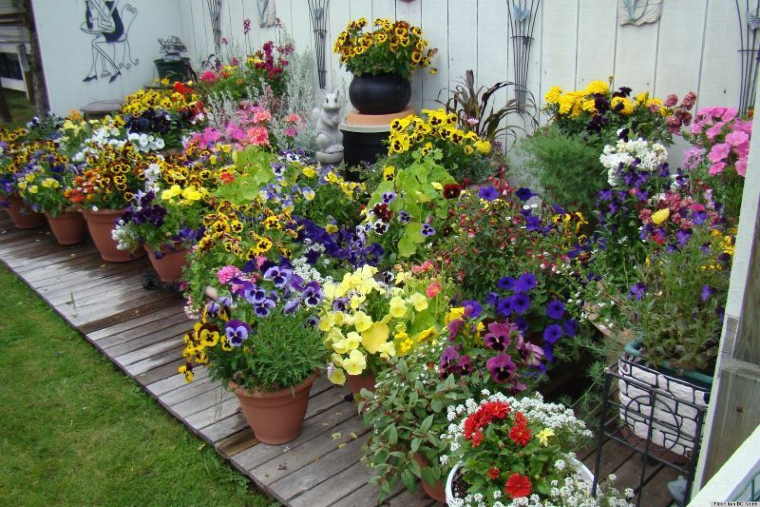 10 pretty container gardens that are perfect for any home for Large flower garden ideas