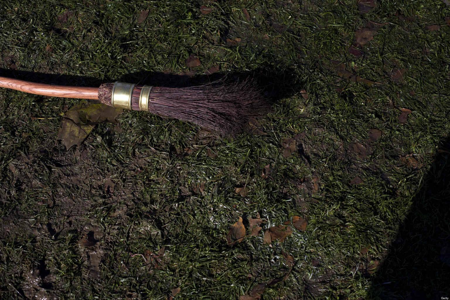Quidditch Broom...