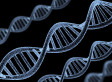 Human Gene Patentability Case Heads To Supreme Court