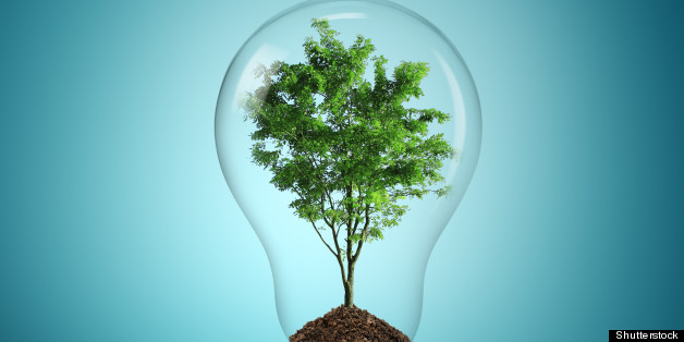 Eco Friendly Products: Which Are Worse? | HuffPost