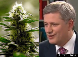 Stephen Harper Marijuana Youtube