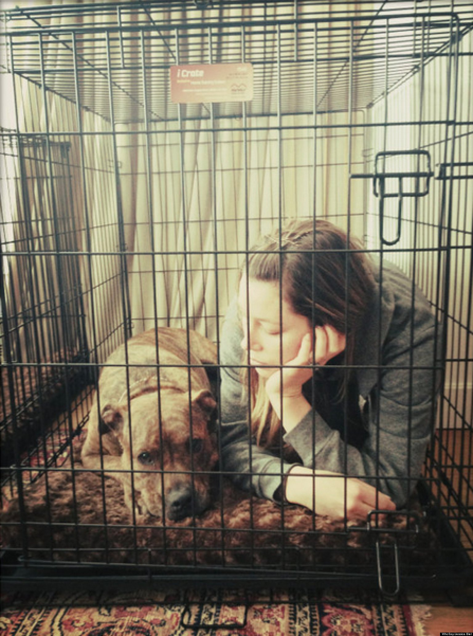 PHOTO: What Is Jessica Biel Doing In A Cage?