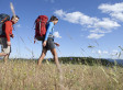 Lyme Disease Rates: Cases Increase In Northern U.S.