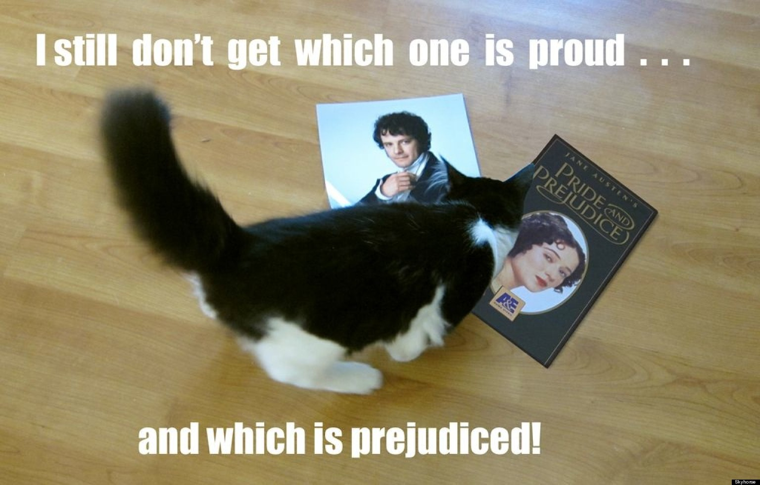 Pride and Prejudice Definition