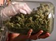 Greenleaf Medicinals Recall Puts Spotlight On Commerical Marijuana's Growing Pains