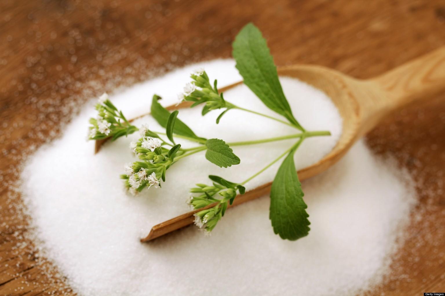 stevia 3|vrestapanta.gr