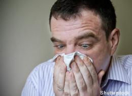 Vers un «traitement universel» pour les allergies!