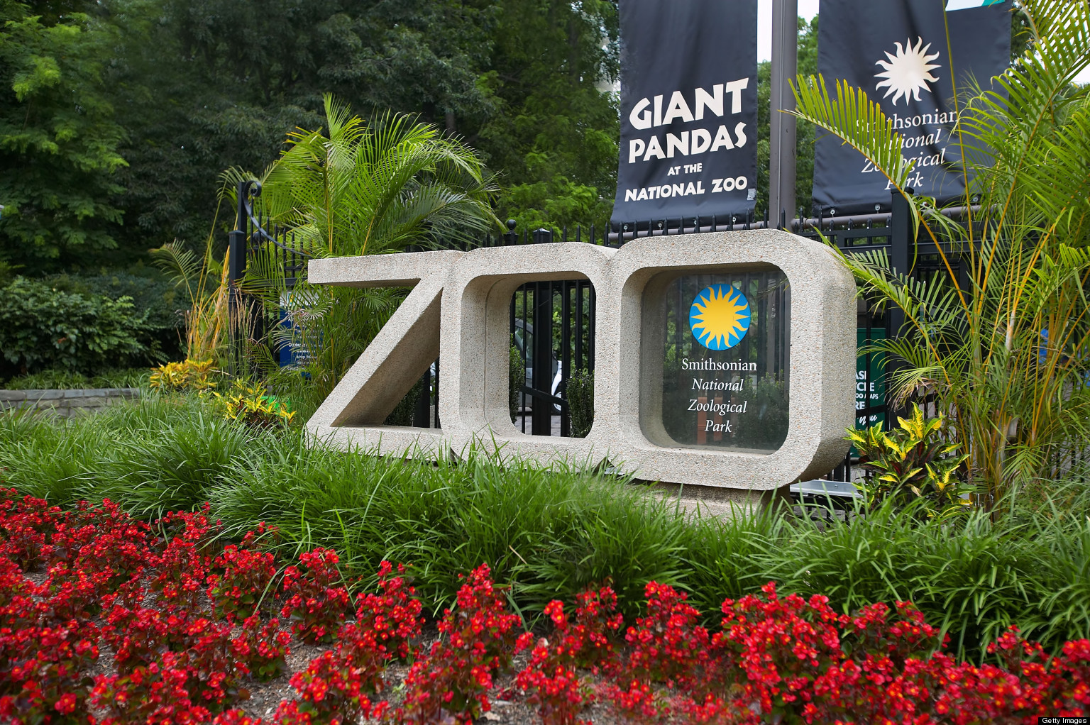 Zoo Offers Irreplaceable Experiences to Connect With ...