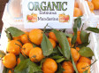 Organic Prices: Food Label Just An Excuse To Charge More, Majority Of Consumers Say In New Poll