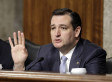 Ted Cruz Attempts Gotcha Moment On Janet Napolitano