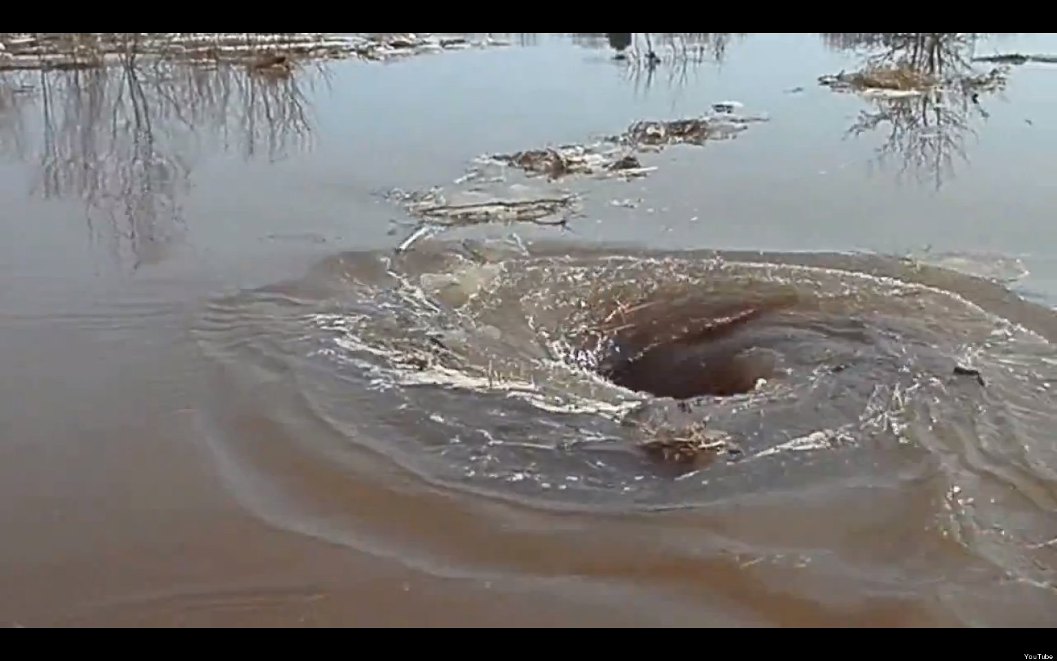 Whirlpool Video Vortex In Latvian River Devours All That Enters