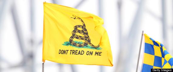 DONT TREAD ON ME FLAG
