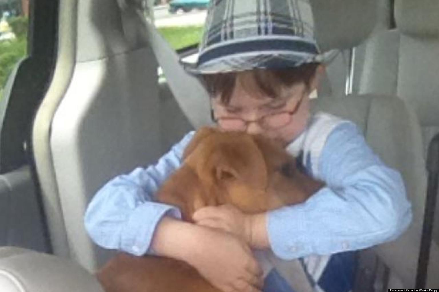 WATCH: Autistic Boy's Heartwarming Friendship With Severely Abused Puppy