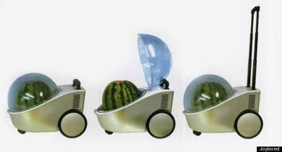 watermelon stroller
